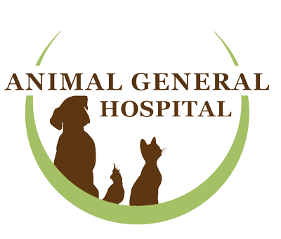 Veterinarian Columbus GA